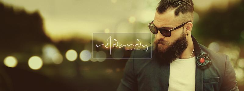 ReDandy_Tailoring_1